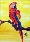 Parrot by afsimart