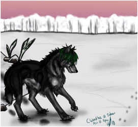 Winter wolf by Pipsu
