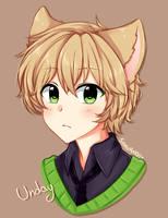 Friendly Fox by Nekuchi