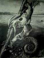 snake and snail by Putnik