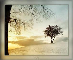 Happy Winter by mental