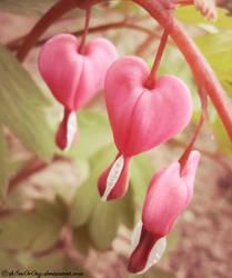 .:Bleeding Hearts:. by LT-Arts