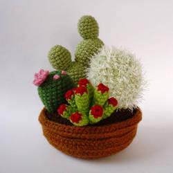 Cactus garden by LunasCrafts