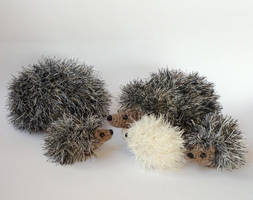 Hedgehog family by LunasCrafts