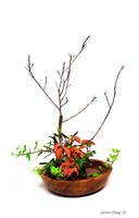 Ikebana 1 by StevenChong-no-GMF