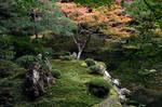 Garden Clearing by StevenChong-no-GMF