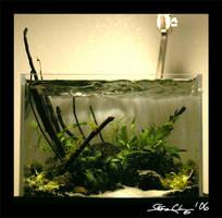 'Aquascape' May Nano 1 by StevenChong-no-GMF