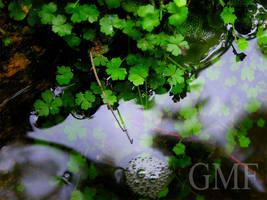 Midori no Hana by StevenChong-no-GMF