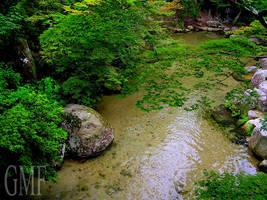 Miyajima Pool by StevenChong-no-GMF