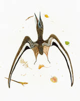 Nyctosaurus dead 2 by Kutchicetus-Minimus