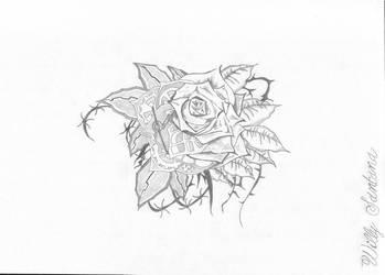 rosa mecnica cyborg by willysantana