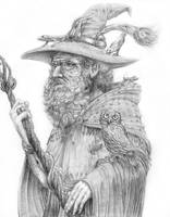 Radagast the brown Wizard by sboterod