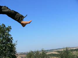 Flying Leg by saftsaak