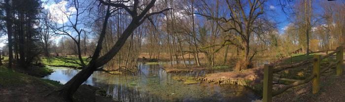 Remchingen Lake Seewiesenquellen by ThePraiodanish