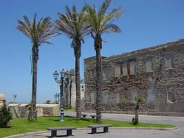 Alghero Palm Trees by ThePraiodanish