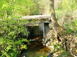 Schlotheim: Creek by ThePraiodanish