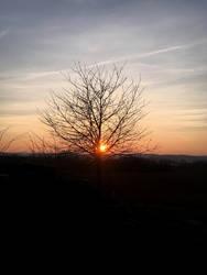 Yet Another Sunset by ThePraiodanish