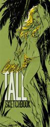 JSC's TALL Sketchbook 2009 by J-Scott-Campbell