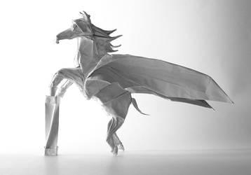 Pegasus by barlou
