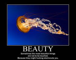 Beauty by TheNarator