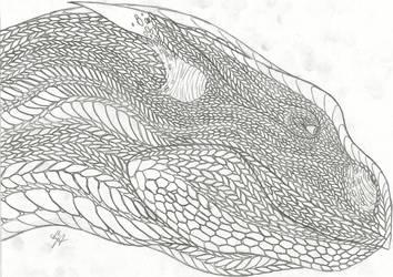 Dragon Sketch by Chigiri16