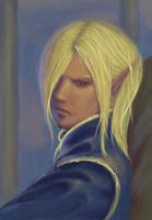 Elf Lord by Ciuva