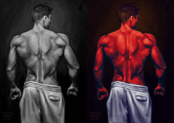 Photo Study - Back Anatomy 01 by dtaskonak