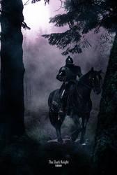 The Dark Knight by Trukrone