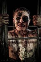 Imprisoned by Nivelis