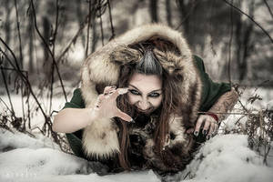 Winter Wolf 2 by Nivelis
