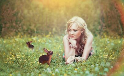Rabbits by krishanpatel