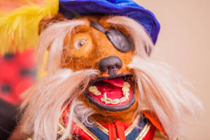 Sir Didymus 05of17 by NickDClements