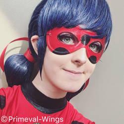 Ladybug by Primeval-Wings