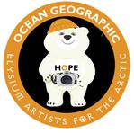 Hope the polar bear by VanWangye