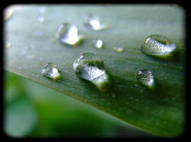 water droplets by TBEE