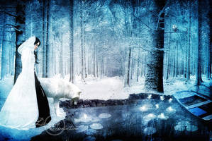 winter fairies by ivadesign