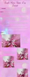 macro water drop tutorial by ivadesign