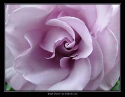 Purple Dreams 3707 by Eolhin