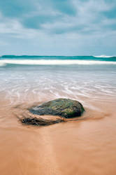 Seaweed and Stone by SevenHeptagons