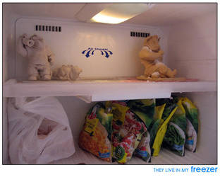 They live in my freezer by avip