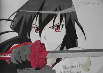 Akame from Akame ga Kill by M0nstac00kie
