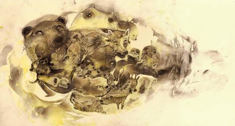 Bearsmile by StefanThompson