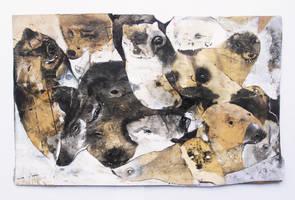 wildboar by StefanThompson