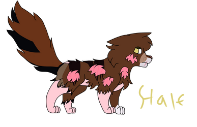 Halfpelt - Warrior cats OC drawing by BraveHeartedw0lf
