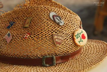 Travel Hat by nicoleshen