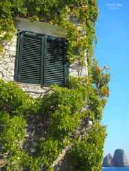 Window to Capri by nicoleshen