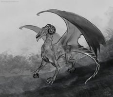 Dragon sketch by Illumikage
