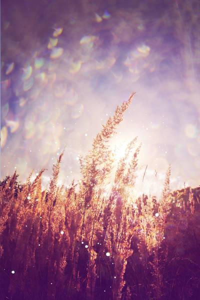 My summer by Ifispirit