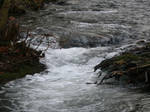 Little Creek by Pattarchus