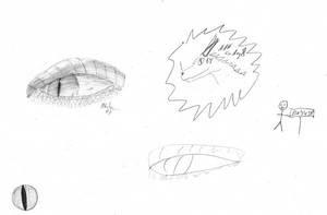 Some drawings... by Pattarchus